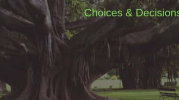 a picture of a very old tree in a park with a park bench in the background. The descriptiopn reads Choices and decisions